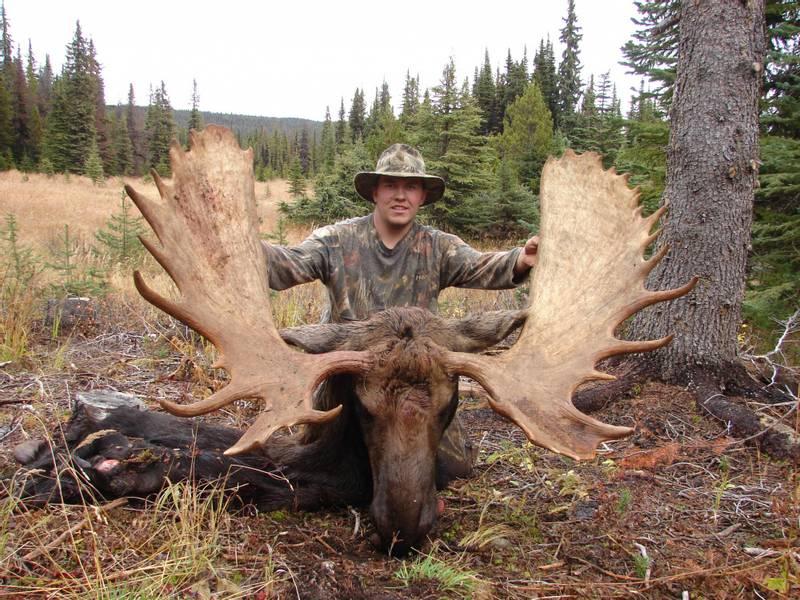 Elgjakt i British Columbia